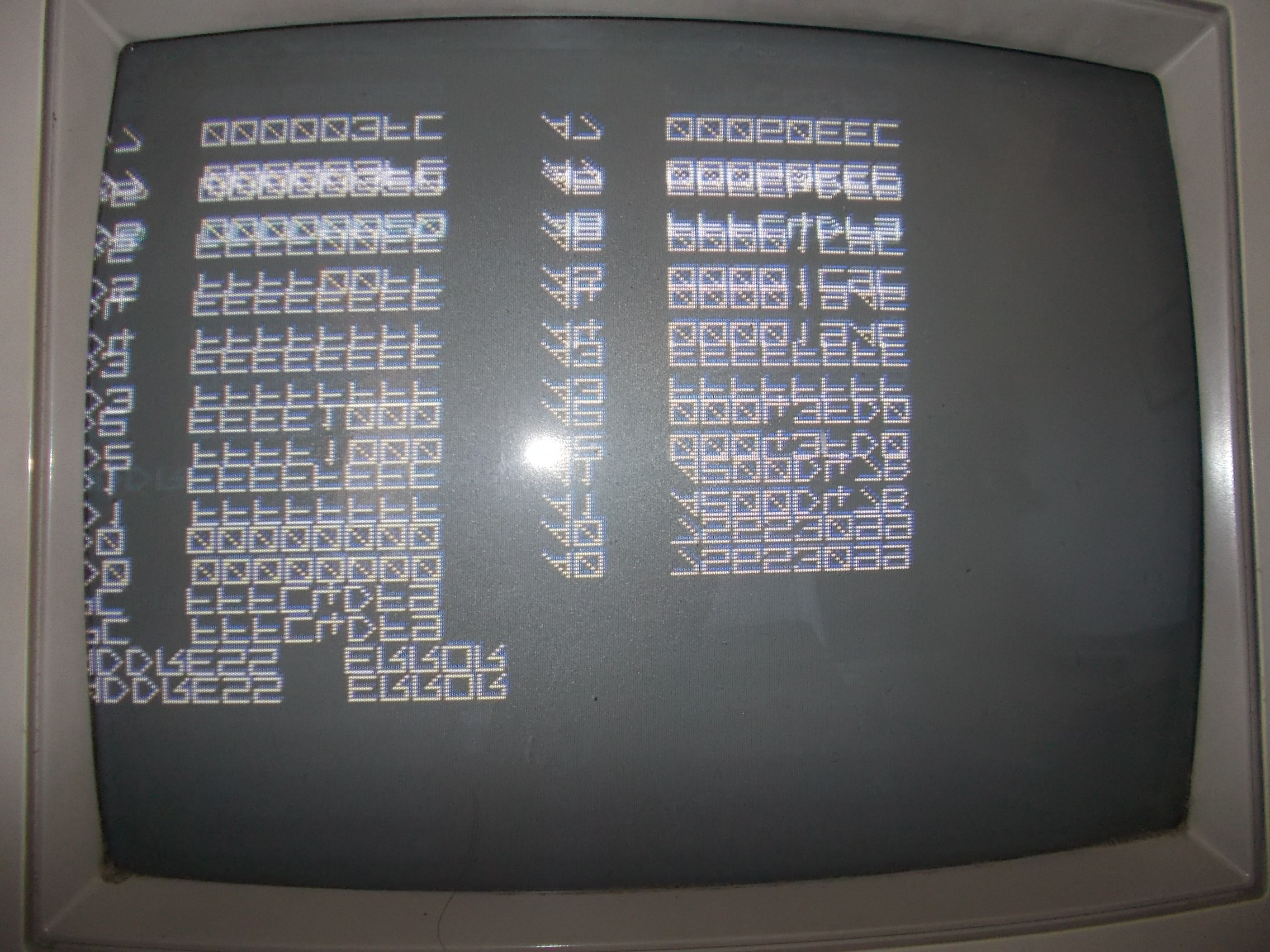 DSCN3875